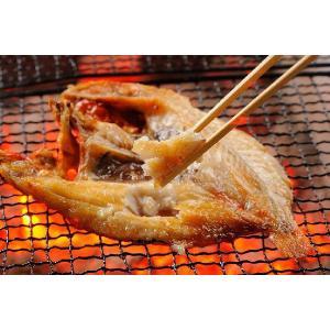 キンキ 一夜干し 純粋知床産 270〜290g きんき めんめ キンキの干物 北海道|shiretokokinki