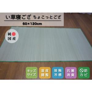 い草マット いぐさシーツ 純国産/日本製 ちょこっとござ  敷パッド約60cm×120cm