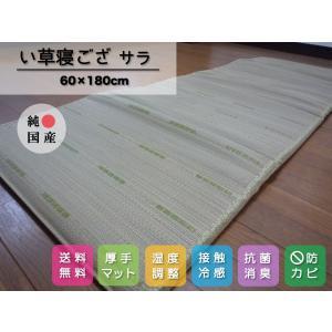 【送料無料】い草マット 寝ござ いぐさシーツ 純国産/日本製 マチ付ごろ寝サラ60cm×180cm