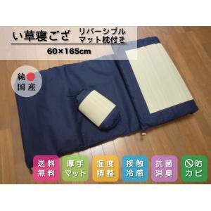 【送料無料】ごろ寝マット 寝ござ いぐさシーツ 純国産/日本製 リバーシブルマット枕付 60cm×1...