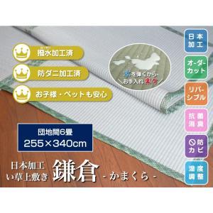 い草上敷き 畳カーペットござ 団地間 6畳  255×340cm 鎌倉 サイズオーダー可 選べる縁の画像