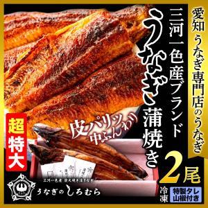 うなぎ BK-2 超特大 2尾 ( 一尾 200g 前後 ) 鰻    ウナギ うなぎ 国産 三河一色産 炭火焼き|shiromura