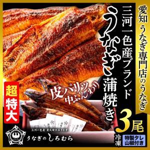 うなぎ BK-3 超特大 3尾 ( 一尾 200g 前後 ) 蒲焼    鰻 ウナギ 国産 三河一色産 炭火焼き|shiromura