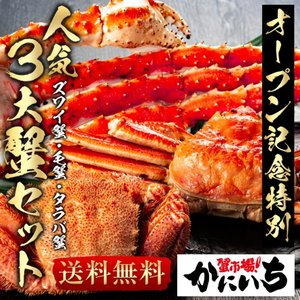 人気3大 蟹 セット ズワイガニ 姿 約750g DAI3 毛ガニ 約570g タラバガニ 5L 肩900g  ずわい  毛ガニ|shiromura