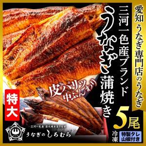 うなぎ TK-5 特大 5尾 (一尾 170g前後) 鰻    ウナギ うなぎ 国産 三河一色産|shiromura