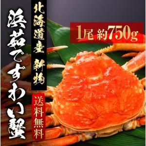 浜茹で ずわい 蟹 1尾 約750g AS-1 北海道産 ずわいがに ズワイガニ カニ かに|shiromura