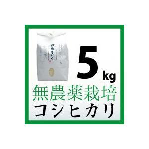 無農薬栽培 コシヒカリ 5kg 令和元年度産 長野県白馬村【しろうま農場】|shiroumanoujyo