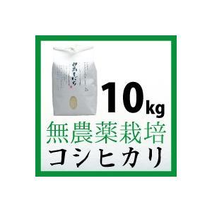 無農薬栽培 コシヒカリ 10kg 令和元年度産 長野県白馬村【しろうま農場】|shiroumanoujyo