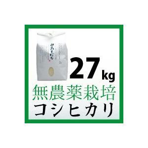 無農薬栽培 コシヒカリ 27kg 令和元年度産 長野県白馬村【しろうま農場】|shiroumanoujyo