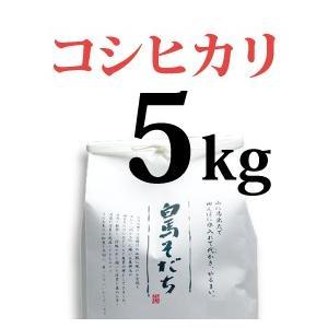 コシヒカリ 5kg 令和元年度産 長野県白馬村【しろうま農場】|shiroumanoujyo