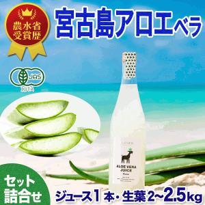 アロエベラ100%生 ジュース 1本  生葉 3kg 健康セット 有機JAS【送料無料】|shirounouen