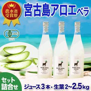 アロエベラ100%生 ジュース 3本 アロエ 生葉 3kg 健康セット 有機JAS【送料無料】|shirounouen