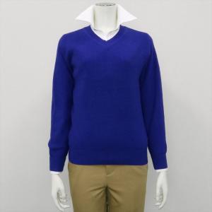 レディース ウィメンズニット Vネック プルオーバー ブルー系 shirt