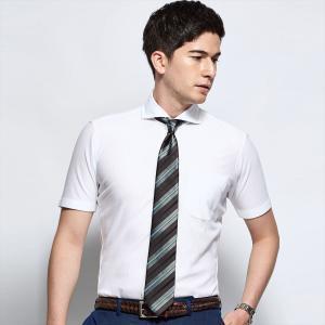 新体型 ビズポロ 半袖 ニットシャツ 形態安定 ホリゾンタル ワイド 白×無地調|shirt