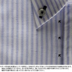 標準体 長袖 Wガーゼ ワイシャツ 形態安定 ボタンダウン 綿100% 白×サックスストライプ|shirt|07