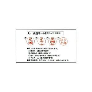 スタンペンGノック式【ブラック】 メールパック方式|shirushidou|02