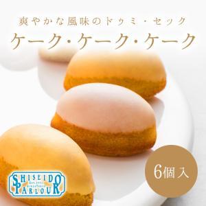 資生堂パーラー ケーク・ケーク・ケーク 6個入 東京・銀座 ...