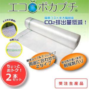 エコポカプチ #20L(スリムタイプ) 2400mm幅×50m巻 【2本セット】|shizaiyasan