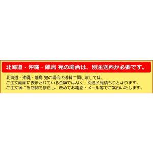 エコポカプチ d37L(標準タイプ) 2400mm幅×50m巻 【1本の場合】|shizaiyasan|02