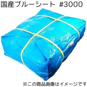 国産ブルーシート #3000 3.6m×5.4m 10枚セット 〔送料無料〕|shizaiyasan