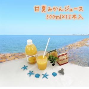 甘夏みかんジュース 500ml×12本入|shizaiyasan