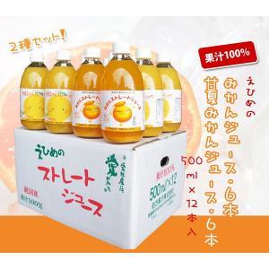 みかんジュース6本 甘夏みかんジュース6本セット 500ml×12本入|shizaiyasan