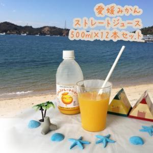 みかんジュース 500ml×12本入|shizaiyasan