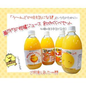 当店オリジナル!瀬戸内の柑橘ジュース 飲み比べセット|shizaiyasan