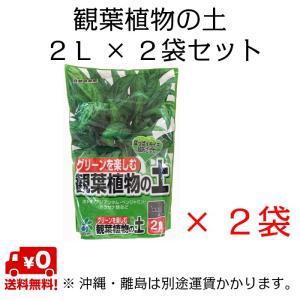 自然応用科学 観葉植物の土 2L×2袋セット shizen-club