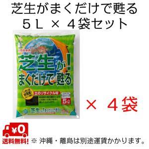 自然応用科学 芝生がまくだけで甦る 5L×4袋セット shizen-club