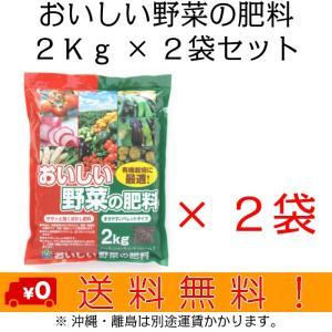 自然応用科学 おいしい野菜の肥料 2Kg×2袋セット|shizen-club