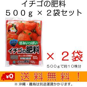 自然応用科学 イチゴの肥料 500g×2袋セット|shizen-club