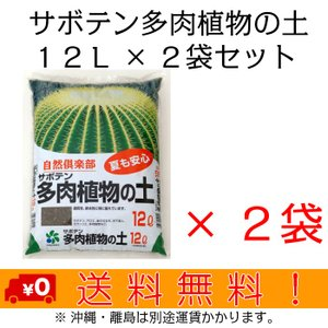 自然応用科学 サボテン多肉植物の土 12L×2袋セット shizen-club
