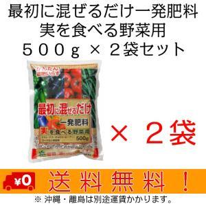 自然応用科学 最初に混ぜるだけ一発肥料(実) 500g×2袋セット|shizen-club