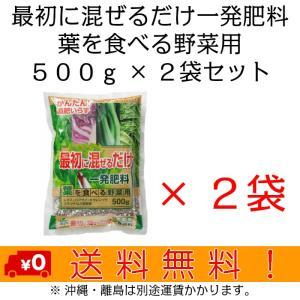 自然応用科学 最初に混ぜるだけ一発肥料(葉) 500g×2袋セット|shizen-club
