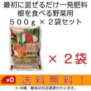 自然応用科学 最初に混ぜるだけ一発肥料(根) 500g×2袋セット|shizen-club