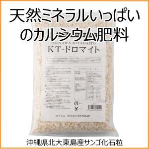 KT−ドロマイト 1Kg×2袋セット|shizen-club