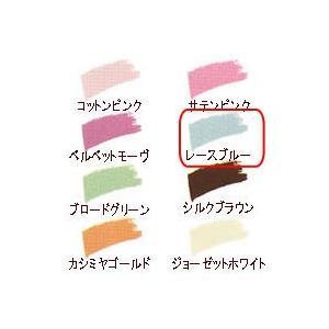 CACメンブレン アイカラー・レフィル レースブルー CAC化粧品 shizenkan