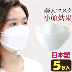 3Dマスク 立体型 BLUE OCEAN(5枚入) 新井  1月新商品|shizenkan
