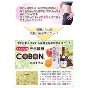 コーボンマーベル(525ml) 選べるプレゼント付 第一酵母|shizenkan|03