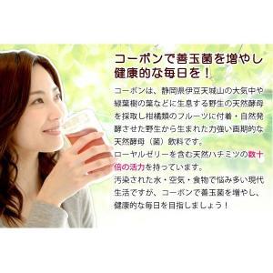 コーボンマーベル(525ml) 選べるプレゼント付 第一酵母|shizenkan|04