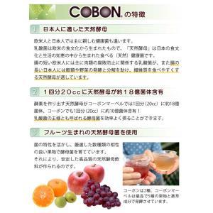 コーボンマーベル(525ml) 選べるプレゼント付 第一酵母|shizenkan|05