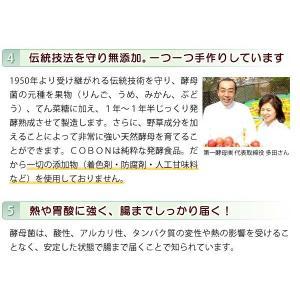 コーボンマーベル(525ml) 選べるプレゼント付 第一酵母|shizenkan|06