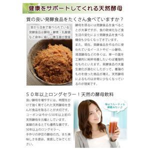 コーボンマーベル(525ml) 選べるプレゼント付 第一酵母|shizenkan|08