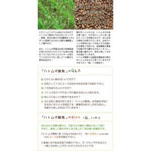 ハトムギ酵素 ハトムギ美人((150g)2.5g×60包) 太陽食品  レビューを書いてサンプルプレゼント|shizenkan|07