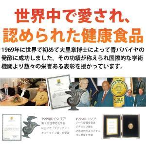 バイオノーマライザー 青パパイヤ発酵食品(3g×30包) 三旺インターナショナル shizenkan 03