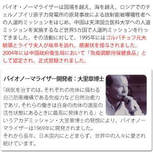 バイオノーマライザー 青パパイヤ発酵食品(3g×30包) 三旺インターナショナル shizenkan 04