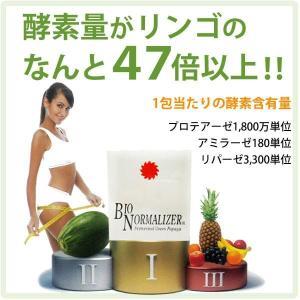 バイオノーマライザー 青パパイヤ発酵食品(3g×30包) 三旺インターナショナル shizenkan 05