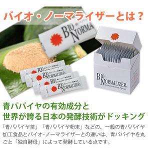 バイオノーマライザー 青パパイヤ発酵食品(3g×30包) 三旺インターナショナル shizenkan 06