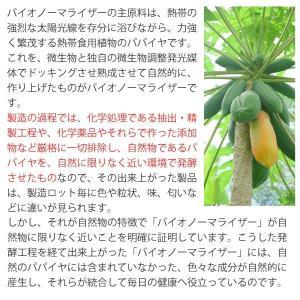 バイオノーマライザー 青パパイヤ発酵食品(3g×30包) 三旺インターナショナル shizenkan 07